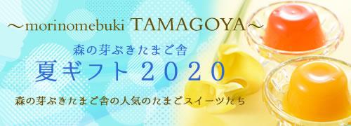 〜morinomebuki TAMAGOYA〜【森の芽ぶきたまご舎 夏ギフト2020】森の芽ぶきたまご舎の人気のたまごスイーツたち