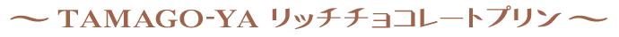 TAMAGOYA リッチチョコレートプリン