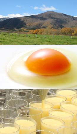 蔵王の雄大な自然、たまご舎のこだわり卵、たまごぷりんを作っている様子、の写真