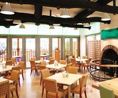 森の芽ぶきたまご舎 名取愛島本店 レストラン店内写真