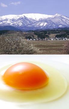 蔵王の風景と蔵王の大自然で育まれた卵の写真