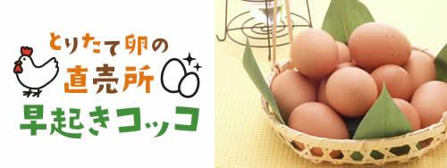 「とりたて卵の直売所 早起きコッコ」ロゴとたまごイメージ写真
